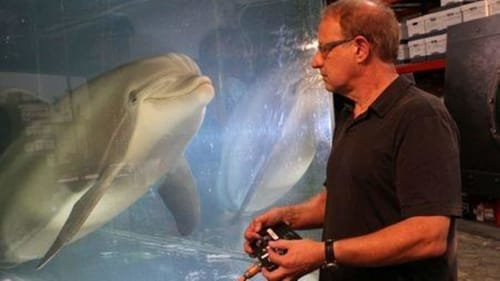 A robotic dolphin may replace animals in parks