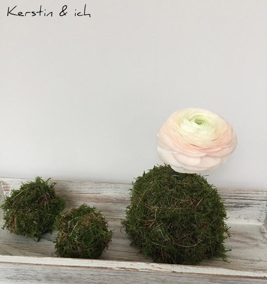 DIY Blumen Moos Frühling