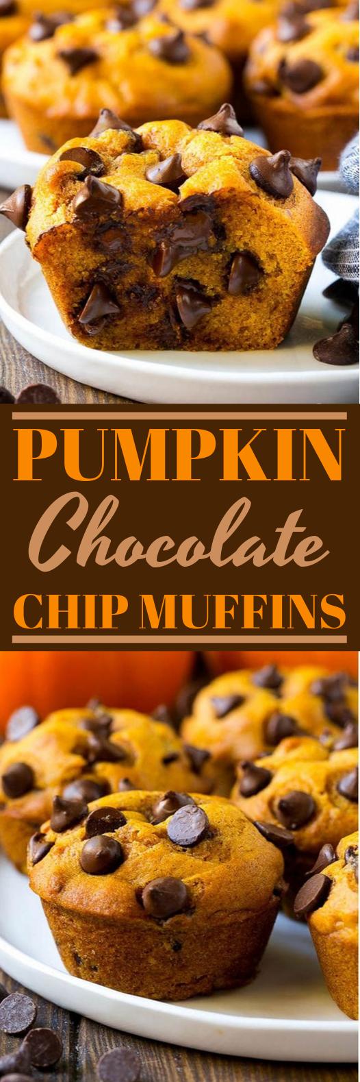Pumpkin Chocolate Chip Muffins #muffins #baking