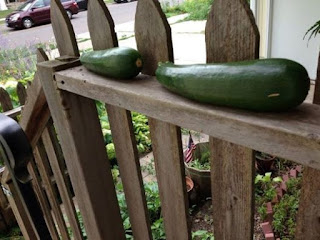 Two green zucchinis on a brown wood railing