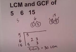 factor tree 5 6 15