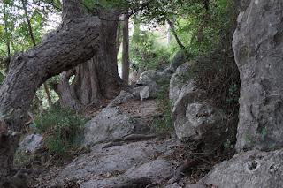 Rocky terrain common across Garner State Park