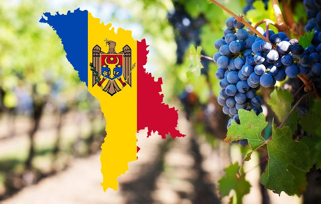 Map of Moldova on a background of a vineyard