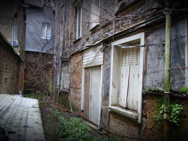 Il ne manque plus que quelques cerfs et daims... 6, rue du Capitaine Dreyfus...
