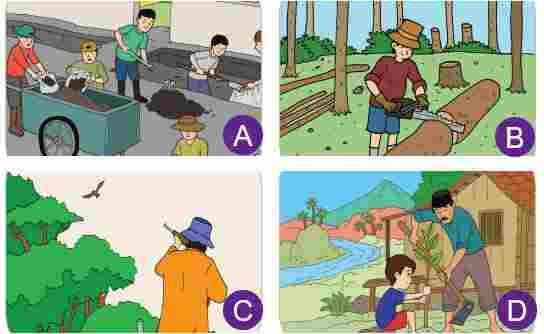 Usaha Pelestarian Lingkungan