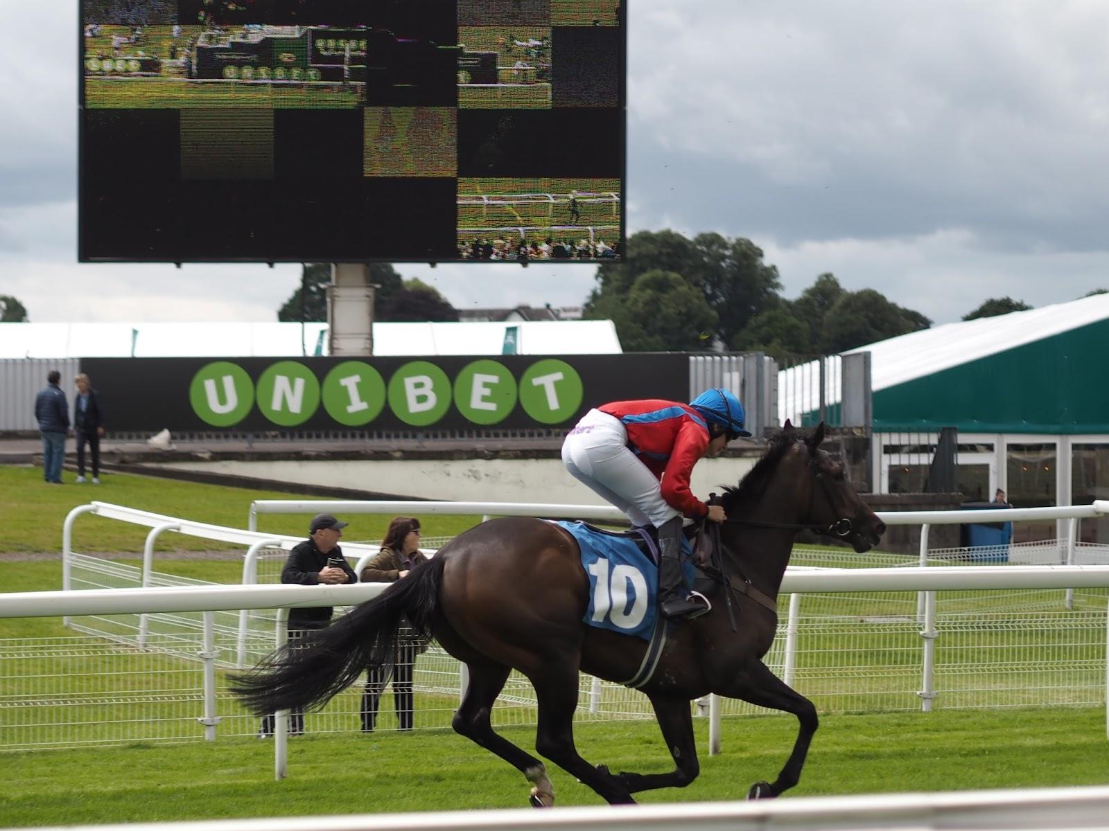 York races screen