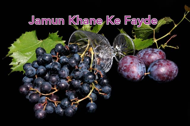 Jamun Khane Ke Fayde in Hindi - Benefits of Java Plum