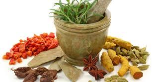 Obat Tradisional Sipilis