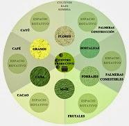 comunidad agroecológica