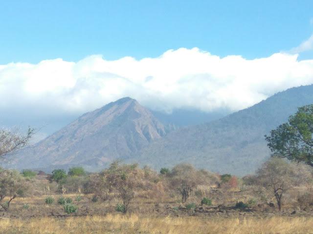 Wisata Internasional Taman Nasional Baluran Situbondo, Jawa Timur