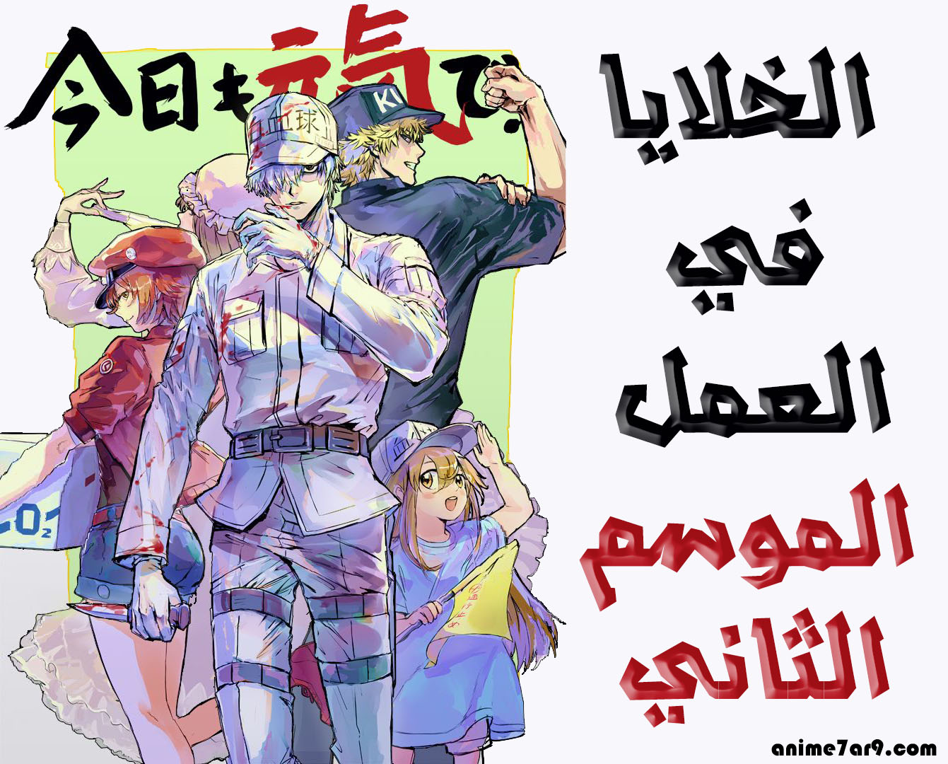 انمي Hataraku Saibou!! 2 (الموسم الثاني)