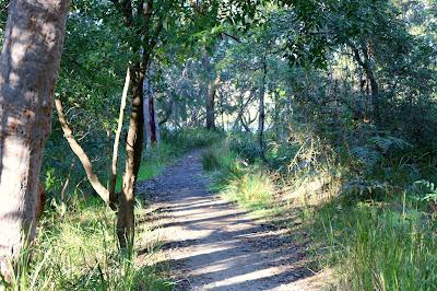 Geocaching in Oatley Park, Sydney Australia