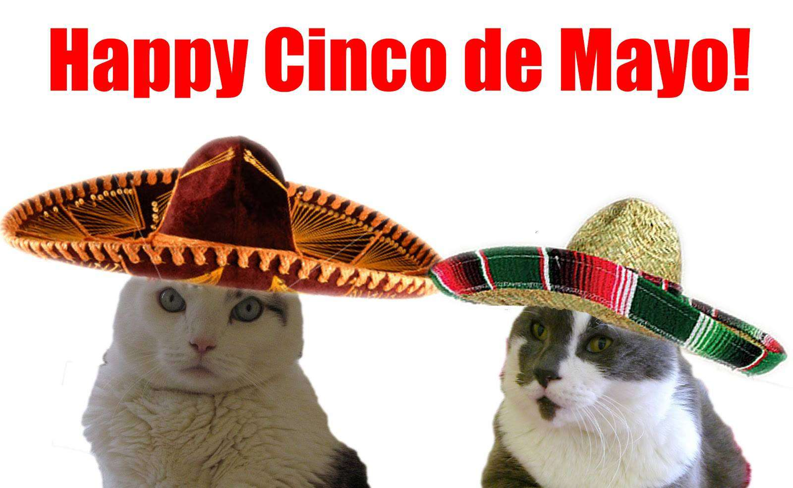 Cinco de Mayo Wishes Beautiful Image