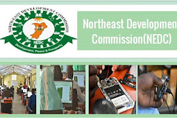 NEDC ICT Resource Training Program For Northeast Region of Nigeria - Training Youths in the use of cutting-edge IT Tools