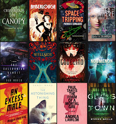 2017 Debut Author Challenge Cover Wars - COVER OF THE YEAR