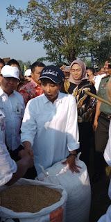 Inilah Kegiatan Menteri BUMN di Tempuran Karawang