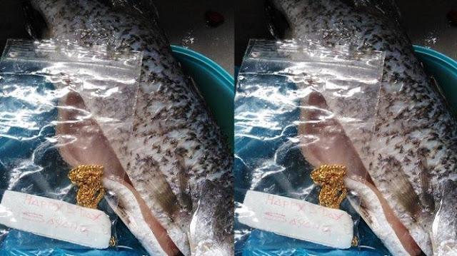 VIRAL Istri Ketiban Rezeki Temukan Kalung Emas di Perut Ikan yang Mau Digoreng, Bak Cerita Dongeng