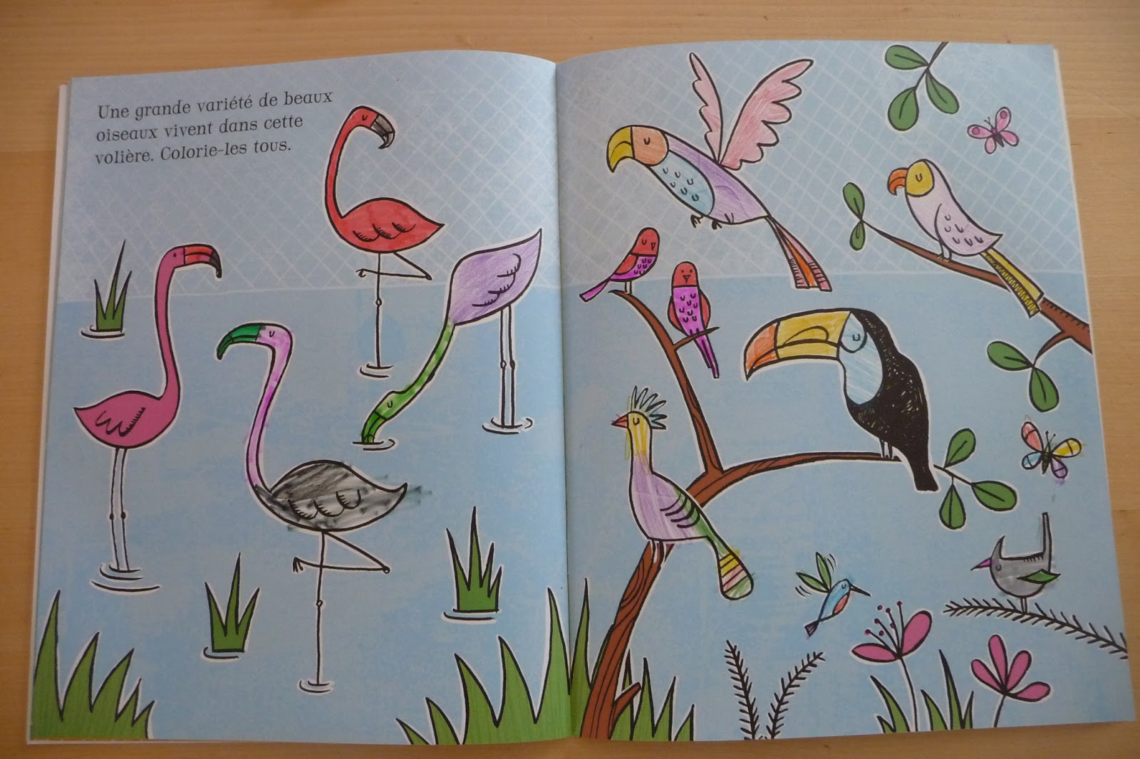 Coloriage Magique Animaux Zoo.Raconte Moi Une Histoire Je Colorie Le Zoo Et Coloriages Magiques