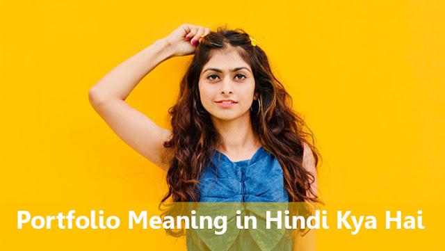 Portfolio Meaning in Hindi Kya Hai
