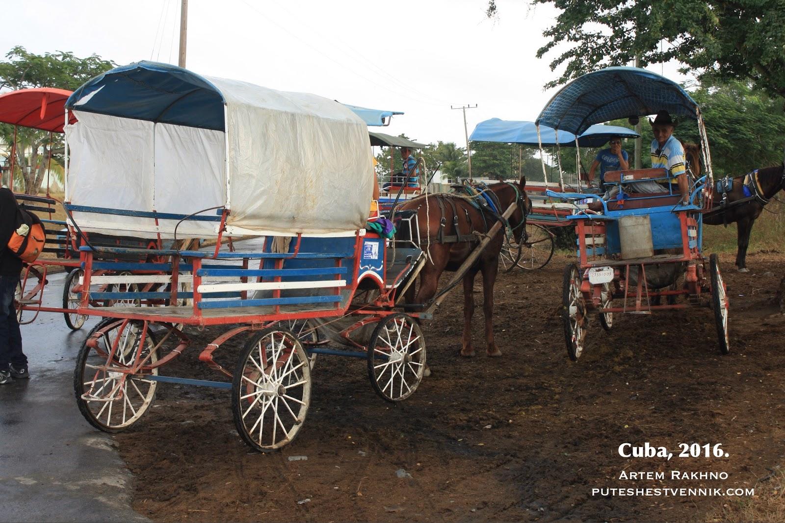 Кареты с лошадьми на Кубе
