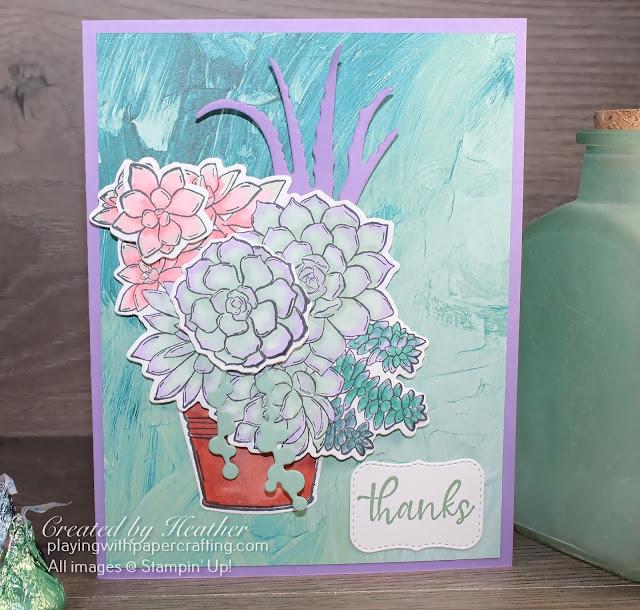 creating a pot of succulents 2
