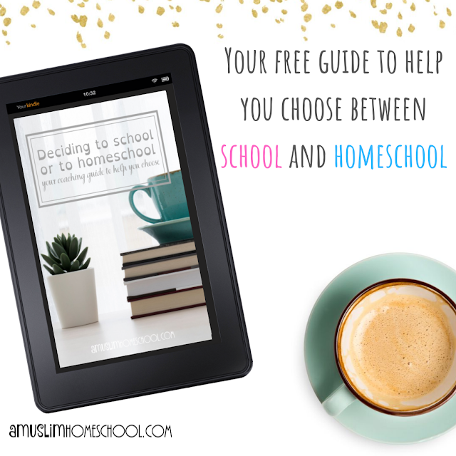 torn between school and homeschool? your free guide to help you choose