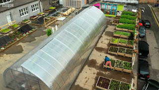 Cork Rooftop Farm.