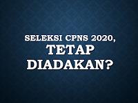 Penerimaan CPNS 2020 Akan Tetap Diadakan?