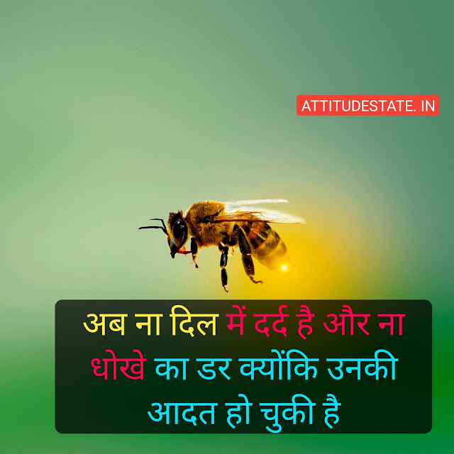 sad high love attitude status in hindi