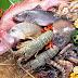 Giới thiệu về chợ hải sản Việt Nam
