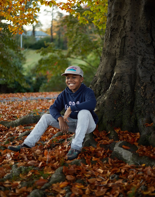 autumn, photography, kids, portraits, leaves, fall, child photos, fall leaves,