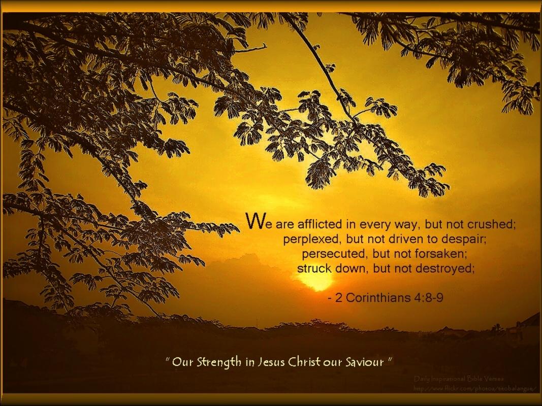 Christmas Cards 2012: Inspirational Bible Verse Wallpapers