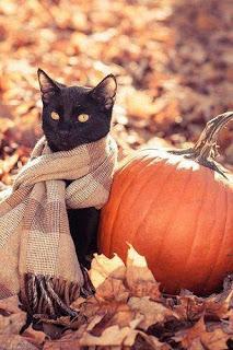 Foto inspiración para reto de octubre en Happy Hour... scrap!