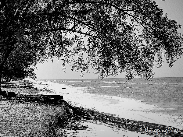 Digital Moments: Quiet On The Beach 05
