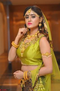 Sony Charishta in Green Choli Ghagra Transparent Chunni Ethnic Wear March 2017 068.JPG