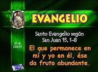 Resultado de imagen para EN aquel tiempo, dijo Jesús a sus discípulos: «Yo soy la verdadera vid, y mi Padre es el labrador.
