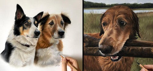 00-Danielle-Fisher-Dog-Portraits-with-Pastel-Drawings-www-designstack-co