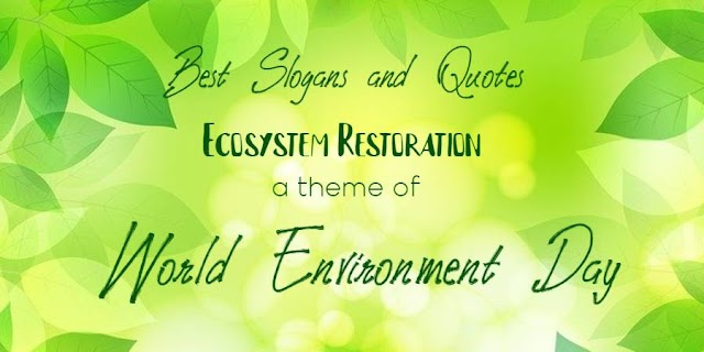 Popular Environment Slogans on Ecosystem Restoration – Environment quotes, messages with posters