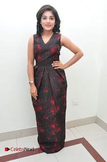 Actress Niveda Thomas Pictures at Gentleman Audio Launch  0092