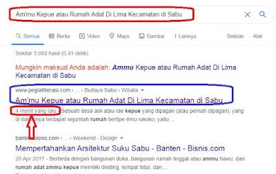 cara cek apakah postingan blog terindeks oleh google