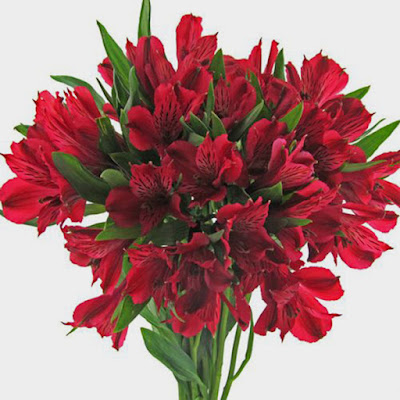 most romantic Valentines day flowers