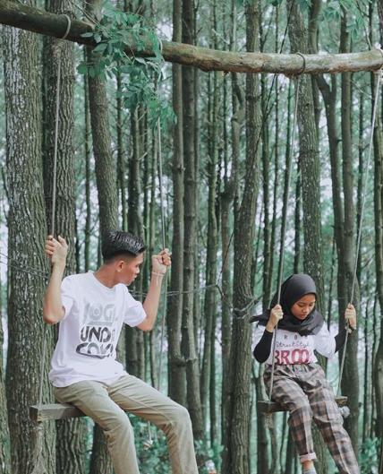 objek wisata hutan pinus pengger
