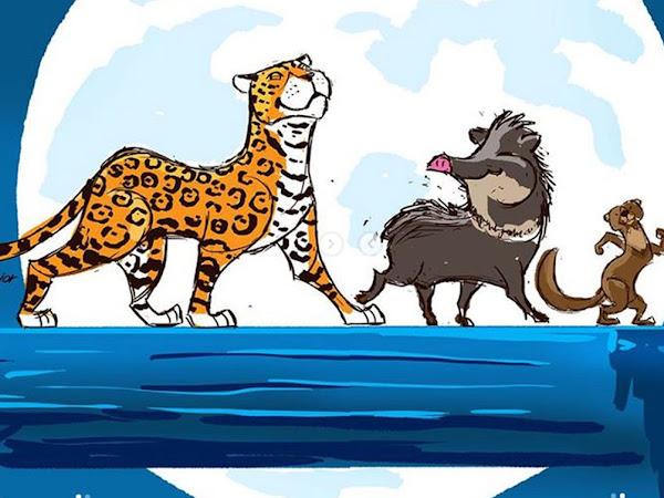 Ilustrações: E se O Rei Leão acontecesse na Amazônia?