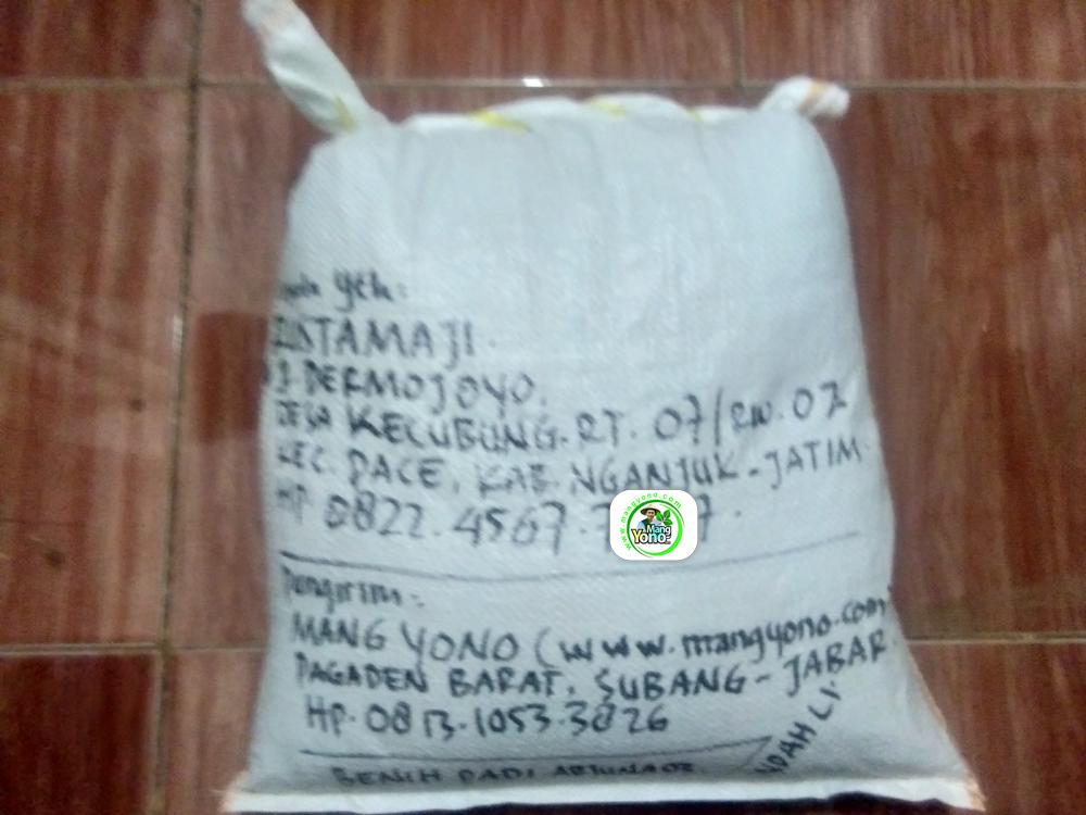 Benih Padi yang dibeli   RUSTAMAJI Nganjuk, Jatim.   (Setelah packing karung).