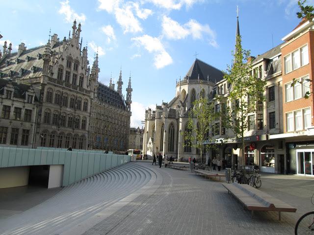 blog.oanasinga.com-winter-in-Europe-Leuven-Belgium-November-2012-(7)
