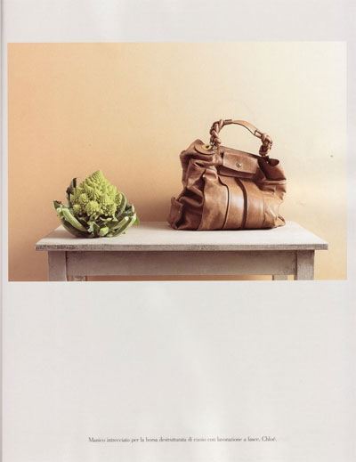{work of art: photographic still lifes}