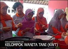 KWT atau Kelompok wanita tani
