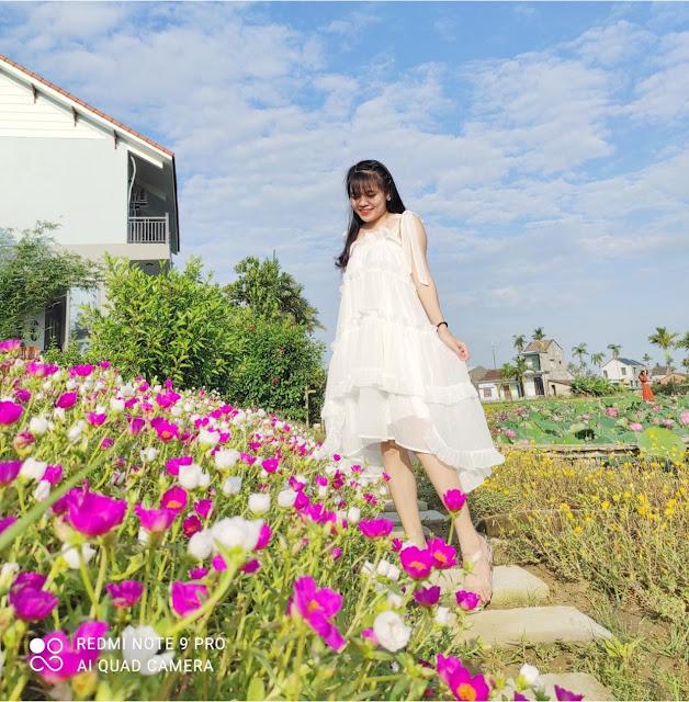 Sen house garden, chụp ảnh sen đà nẵng, chụp ảnh sen quảng nam