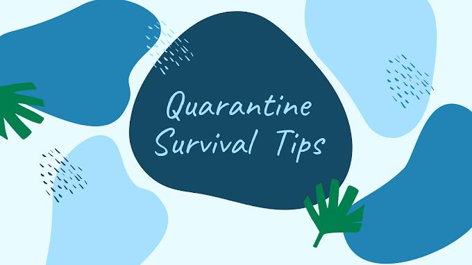 Quarantine Survival Tips | Lifestyle 2020