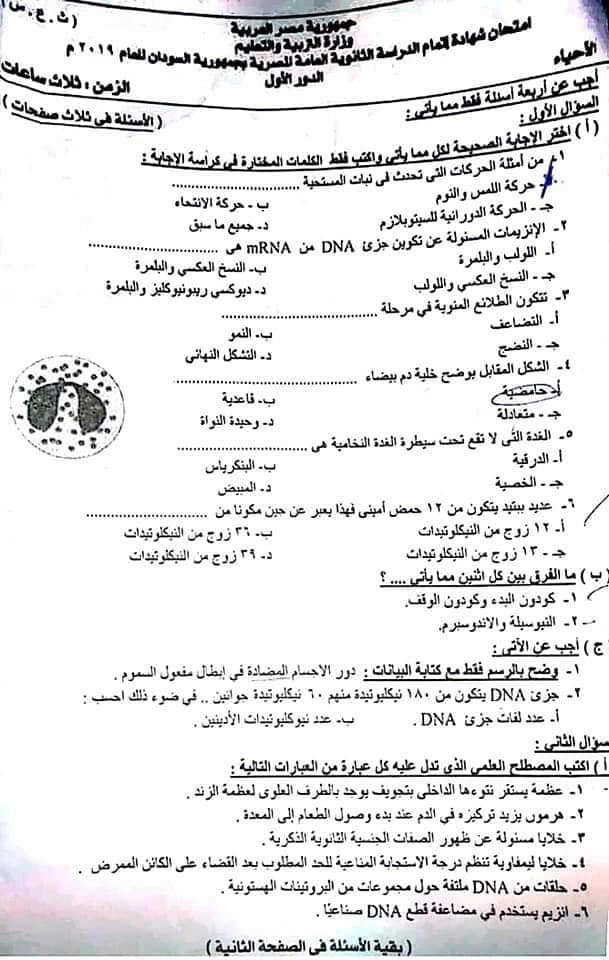 تجميع كل امتحانات السودان للصف الثالث الثانوي 2019 %25D8%25A7%25D8%25AD%25D9%258A%25D8%25A7%25D8%25A11